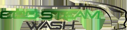 EcoSteamWash
